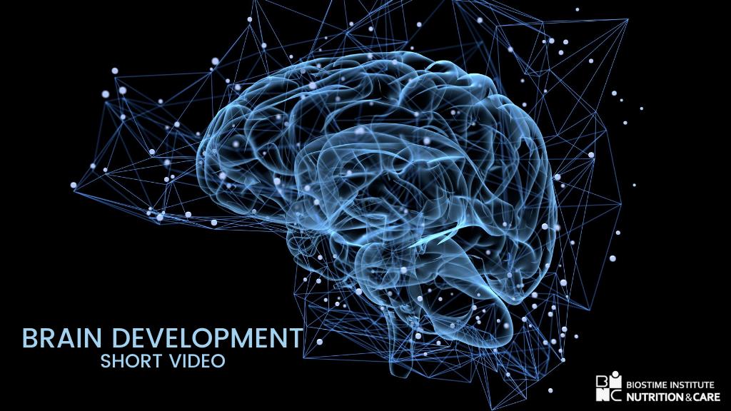 Brain Development short video BINC